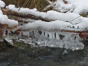Frostgebilde