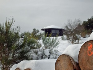 Die windgeschützte Hütte