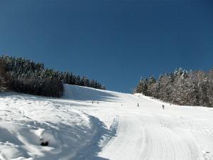 Skiabfahrt in Menzenschwand