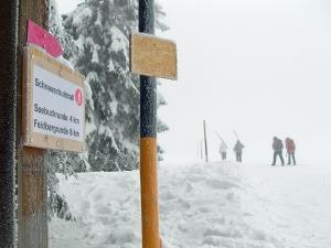Feldberg Trail 8km