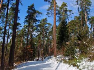bunter Winter & Ruhe