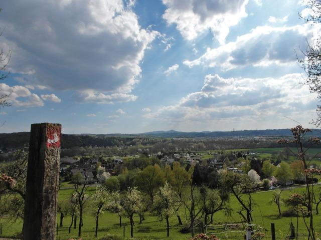 Blick ins Siebengebirge