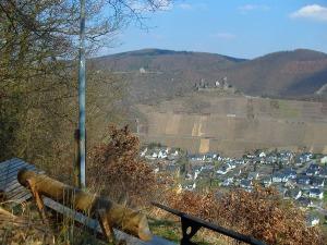 Blick auf Burg Thurant