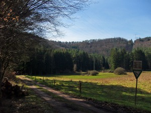 Naturschutzgebiet Tiergarten