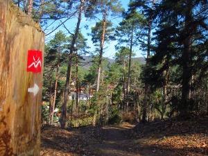 Richtung Spirkelbach