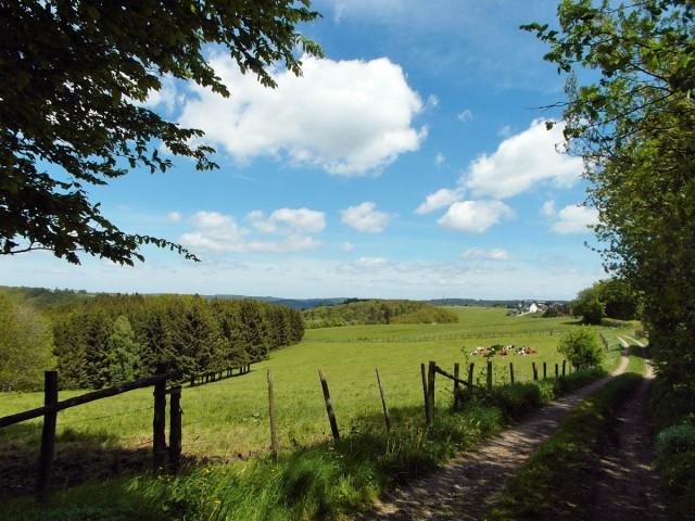 Feldwege bei Bronsfeld
