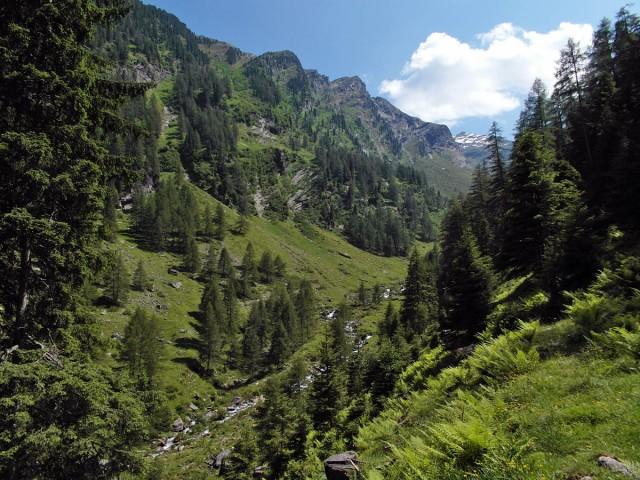 Das ungeplante urige Tal
