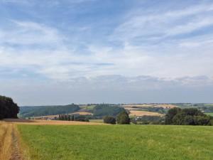 Feld und Wiesenwege