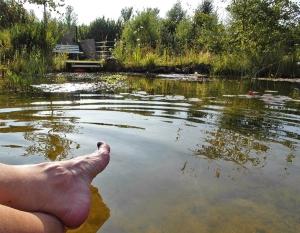 Abkühlung am Teich