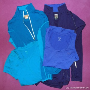 Icebreaker Top, Shirt und Langarm