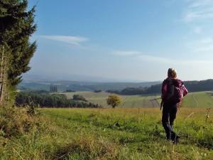 Weiche Wiesenwege hinab ins Quackenbachtal