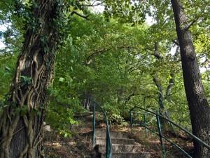Zahlreiche Treppen führen hinauf