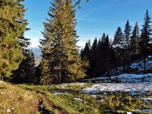 Der Wiesenweg mit Restsonne