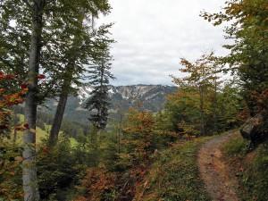 Pfad mit Bergblick