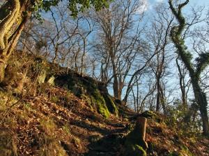 Steiler Pfad zum Breiberg