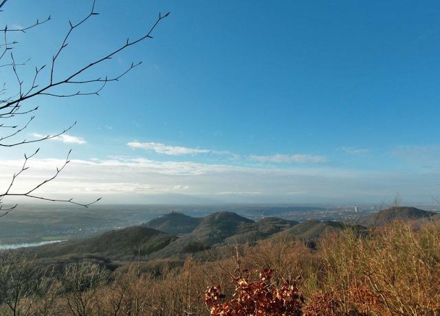 Blick auf den Drachenfels und Bonn