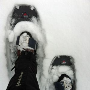Schneestapfen