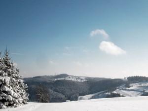 Blick auf Jammelshofen und den Raßberg