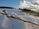 Schnee & Frühling im Allgäu