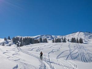 Skitourengeher vor dem Bleicherhorn