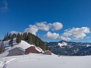 Die Höllritzer Alpe