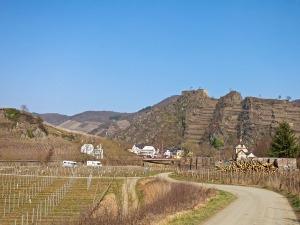 Die Saffenburg