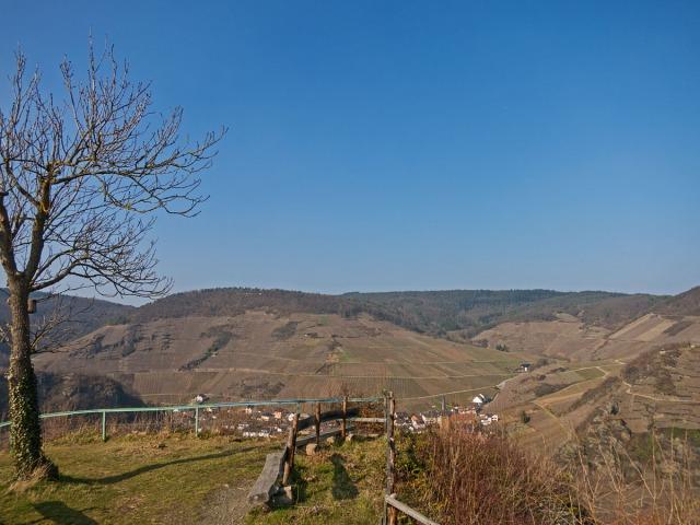 Blick auf Mayschoß und den Rotweinwanderweg