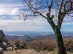 Frühlingsbeginn im Siebengebirge