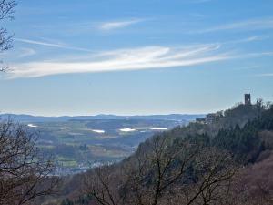 Blick auf die andere Rheinseite