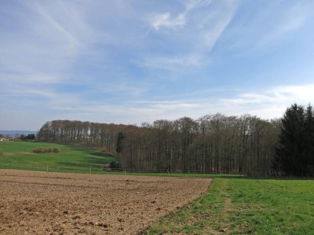 Feldwege