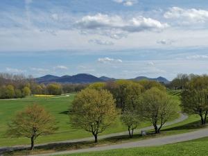 Rheinaue mit Siebengebirgsblick