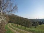 Nach der Rast auf der Bank folgt ein toller Blick ins Tal
