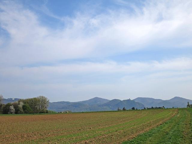 Erster Blick aufs Siebengebirge