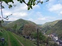 Der Wiesenweg oberhalb von Steg