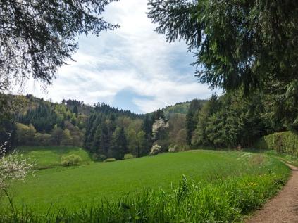 An Wiesen entlang