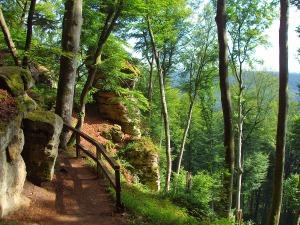 Felsenweg NaturWanderPark delux