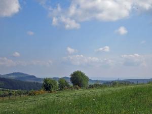 Burg Olbrück in Sichtweite