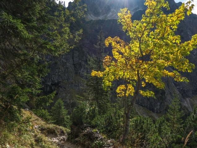 Herbstliche Stimmung beim Abstieg