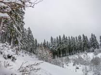 Eifel im Schnee