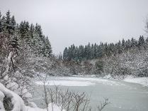 Der kleine See ist zugefroren