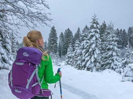 Schneeschuhtour am Weißen Stein
