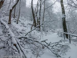 sturm_winter