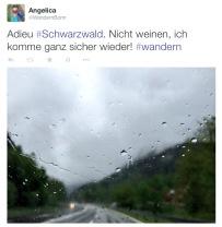 Adieu_Schwarzwald_Twitter