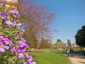Botanischer_Garten_Bonn